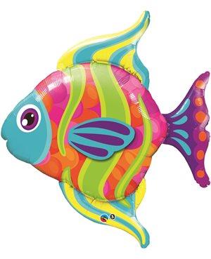 Fashionable Fish