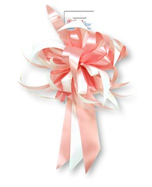 Starburst Bow - Pink / White