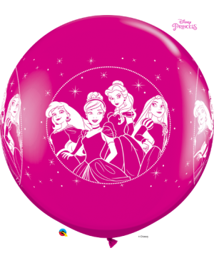"Disney Princesses 3"" (Assorted Pink& Wild Berry) (2ct)"