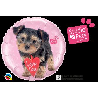 "18"" Studio Pets-Love You Terrier (Minimo 3 Unid)"
