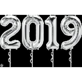 """34"""" 2019 Kit -Silver"""