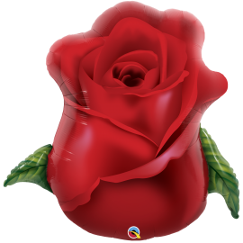 "33"" Red Rose Bud (Minimo 3 unid)"